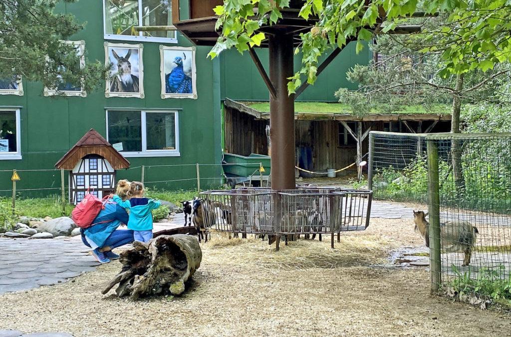 Die Zoos haben wieder geöffnet